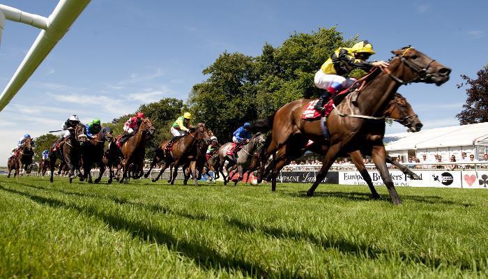 at yarışı canlı